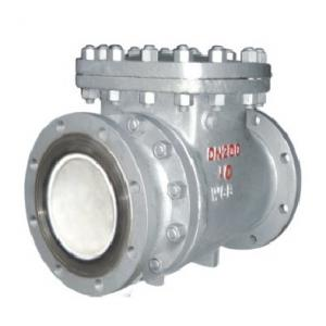 Ceramic lined check valve