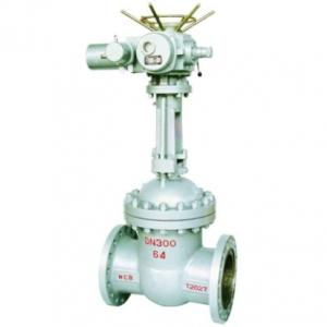 Z941H-16C Electrical gate valve