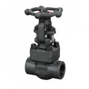 Socket welded gate valve
