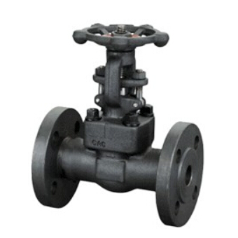 API Forged Steel Gate Valve 150Lb~1500Lb
