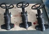 J61Y-320C DN50 Globe valve