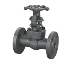 Integral flange forged gate valve