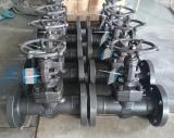 A105 globe valve