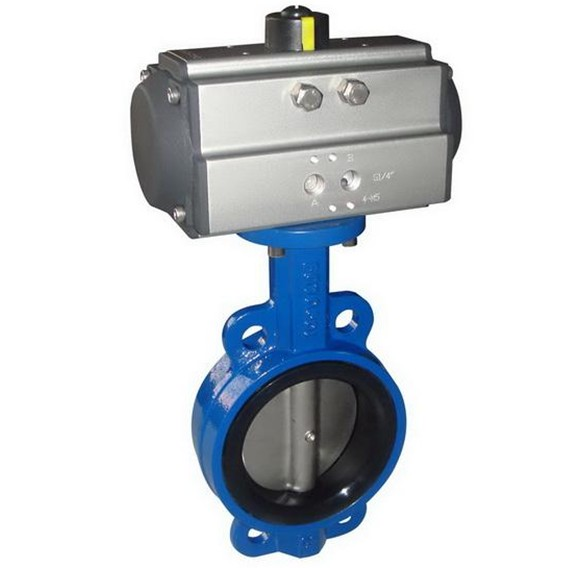 Pneumatic control butterfly valve