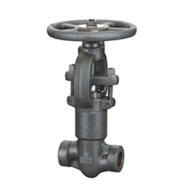 Pressure self-sealing forged globe valve