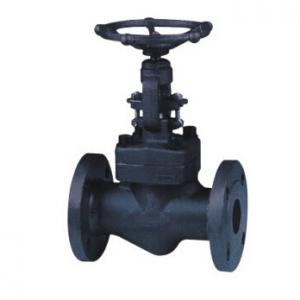 LF2 forged globe valve