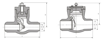 H64Y High pressure check valve structure