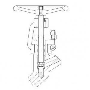 SW BW Forged steel Y type globe valve