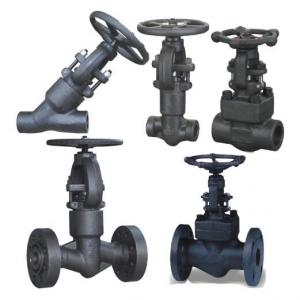 BW SW Forged Steel Gate Valve Class 800