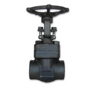 Forged Steel Threaded NPT Gate Valve