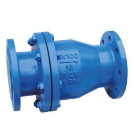 PTFE FEP PFA lined swing check valve