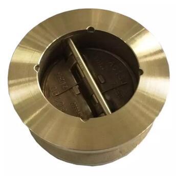 Aluminium bronze C95800 Non-return valve