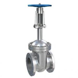 Flange end cryogenic gate valve